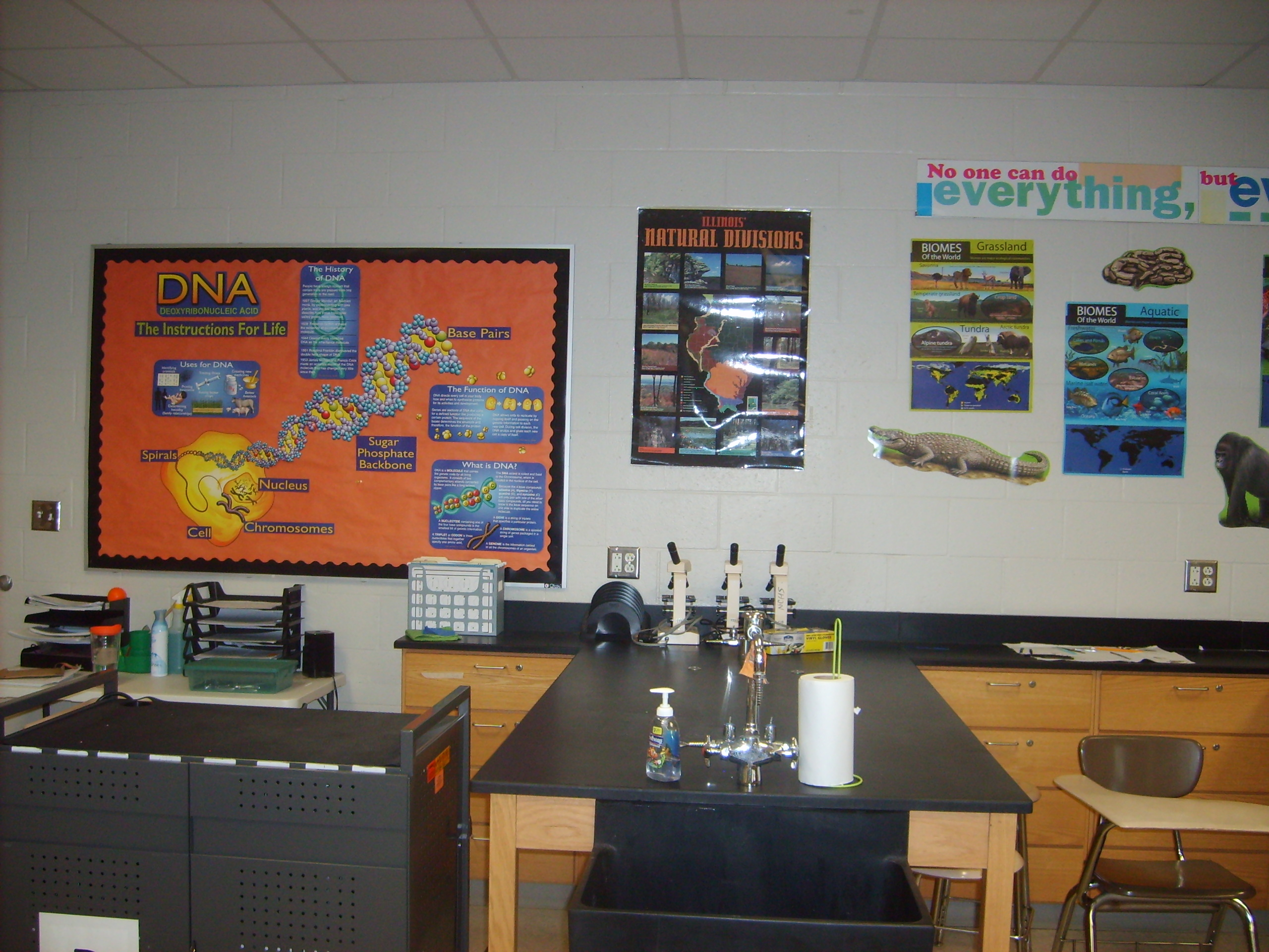 Biology Classroom Decoration ~ What about decorating the classroom determined teacher